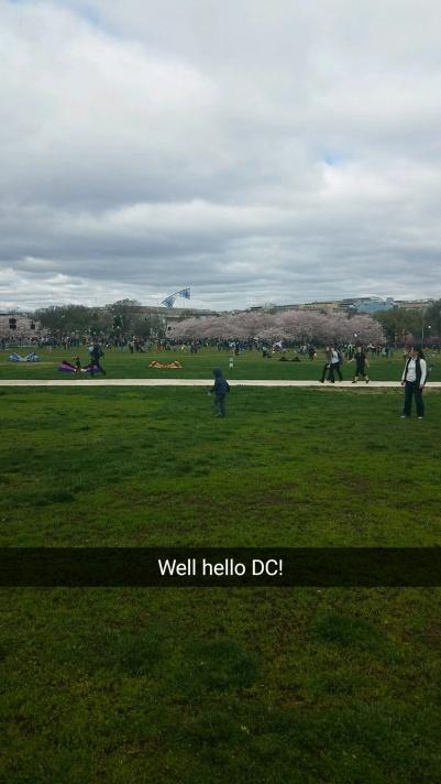 Kites DC